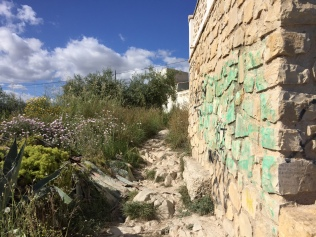 Turn right at the clifftop and follow this stony path around the back of the villa. Then rejoin the cliff path on the other side.