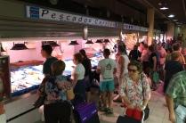 Fish counters, Mercado Central