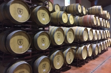 Wine maturing in a mixture of French, American and Hungarian oak barrels