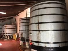 Primitivo Quiles bodega, Monóvar: younger wine maturing