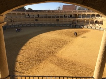 Whether you're a bullfight fan or not, the Plaza de Toros in Ronda is well worth a look.